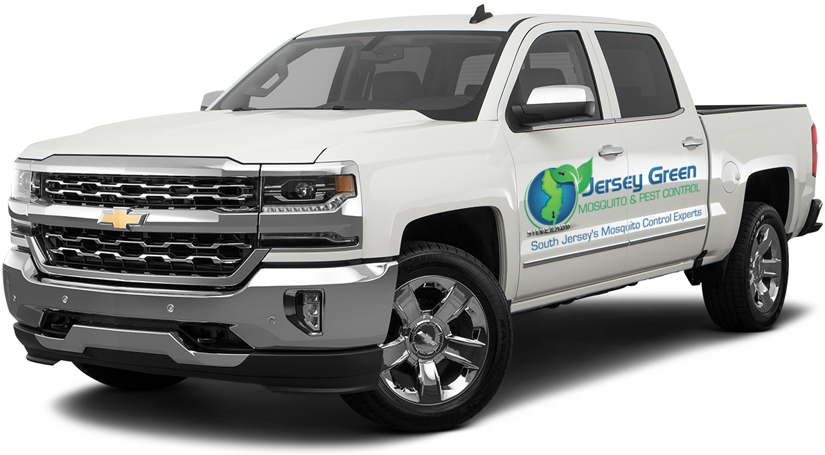 Jersey Green Pest & Mosquito Control